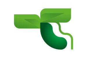 A zucchini plant icon, illustration by Francesco Faggiano illustrator
