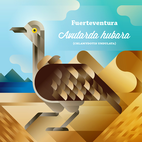 Avutarda hubara bird on a sandy beach, symbol of Fuerteventura island, art print illustration by Francesco Faggiano illustrator
