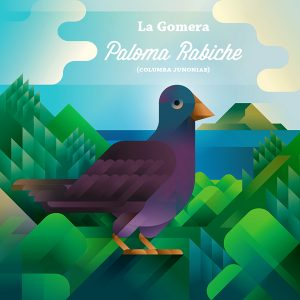 Paloma rabiche pigeon bird on hill, symbol of La Gomera island, art print illustration by Francesco Faggiano illustrator