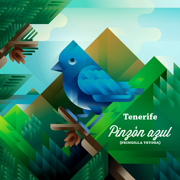Pinzón azul bird on a tree with Teide mountain landscape, symbol of Tenerife island, art print illustration by Francesco Faggiano illustrator