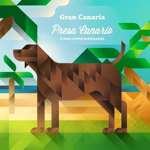 Presa canario dog on a beach, symbol of Gran Canaria island, art print illustration by Francesco Faggiano illustrator